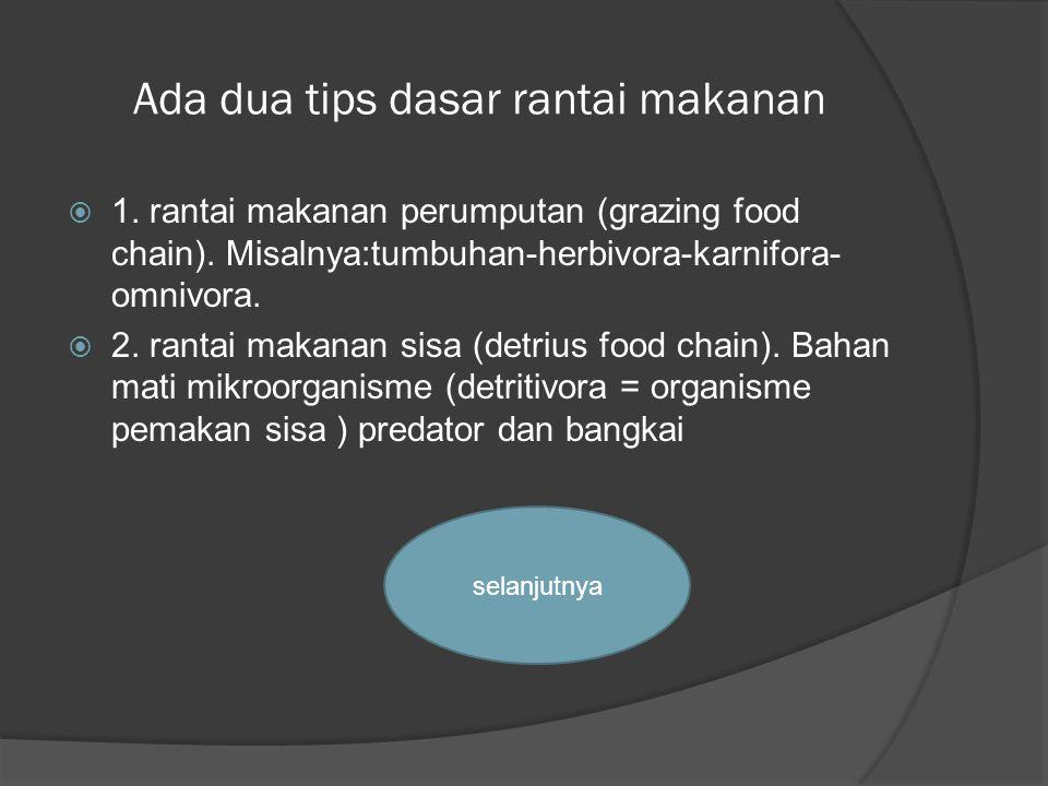 Ada dua tips dasar rantai makanan  1. rantai makanan perumputan (grazing food chain). Misalnya:tumbuhan-herbivora-karnifora- omnivora.  2. rantai ma