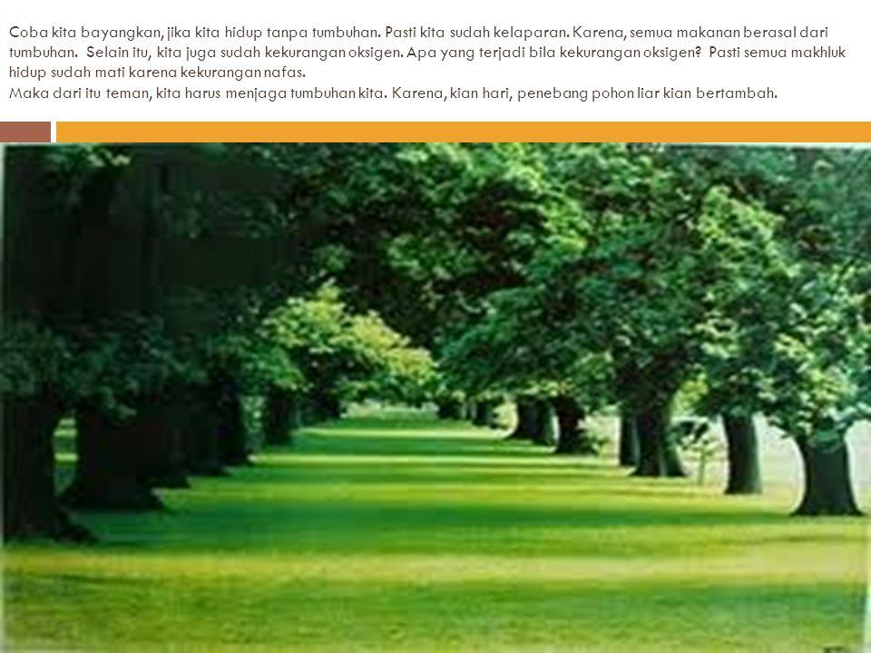 Selain menghasilkan makanan, tumbuhan juga menghasilkan oksigen. Pernahkah kalian bertetuh di pohon rindng? Bagaimana rasanya? Sejuk bukan? Kalian pas