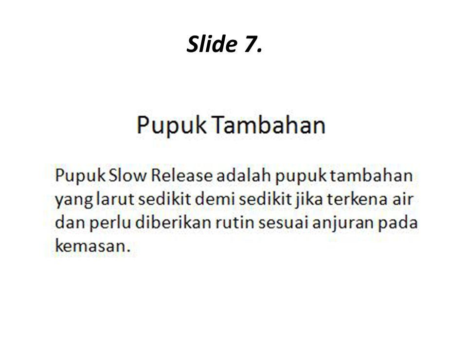 Slide 7.
