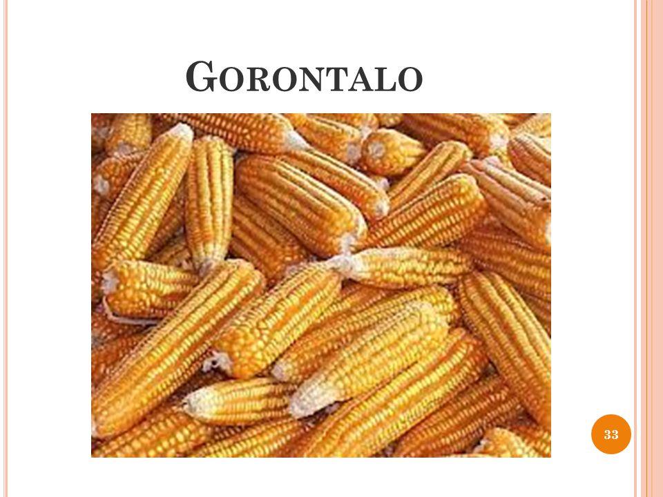 G ORONTALO 33