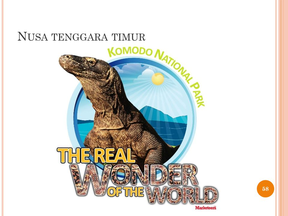 N USA TENGGARA TIMUR 58