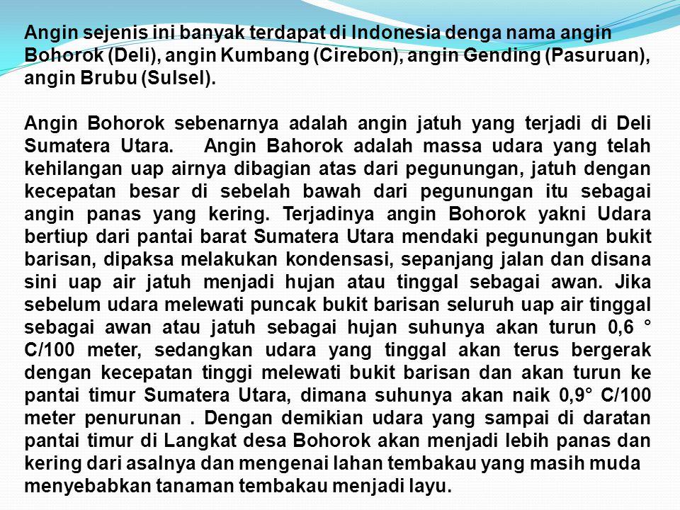 Angin sejenis ini banyak terdapat di Indonesia denga nama angin Bohorok (Deli), angin Kumbang (Cirebon), angin Gending (Pasuruan), angin Brubu (Sulsel