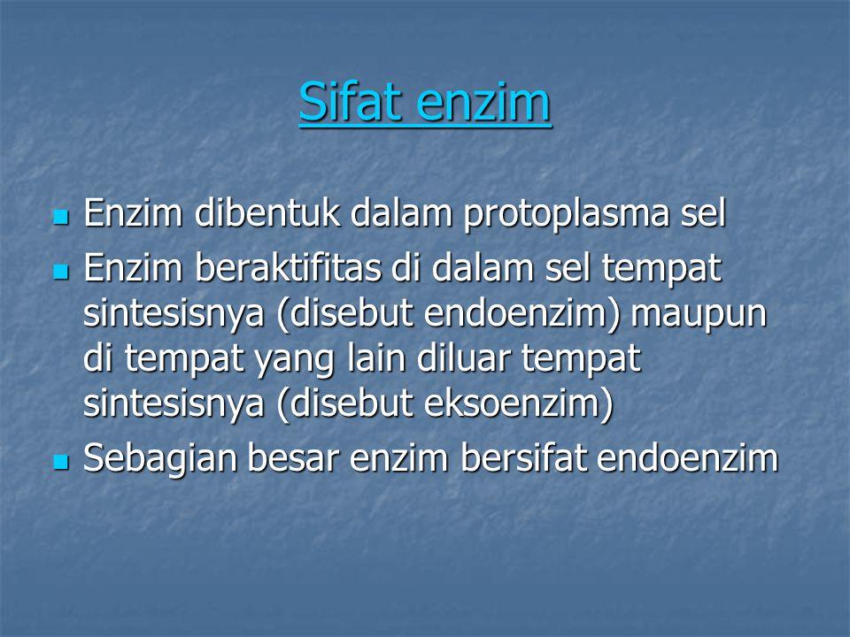 Sifat enzim Sifat enzim Enzim dibentuk dalam protoplasma sel Enzim dibentuk dalam protoplasma sel Enzim beraktifitas di dalam sel tempat sintesisnya (disebut endoenzim) maupun di tempat yang lain diluar tempat sintesisnya (disebut eksoenzim) Enzim beraktifitas di dalam sel tempat sintesisnya (disebut endoenzim) maupun di tempat yang lain diluar tempat sintesisnya (disebut eksoenzim) Sebagian besar enzim bersifat endoenzim Sebagian besar enzim bersifat endoenzim