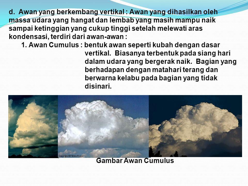 d. Awan yang berkembang vertikal : Awan yang dihasilkan oleh massa udara yang hangat dan lembab yang masih mampu naik sampai ketinggian yang cukup tin