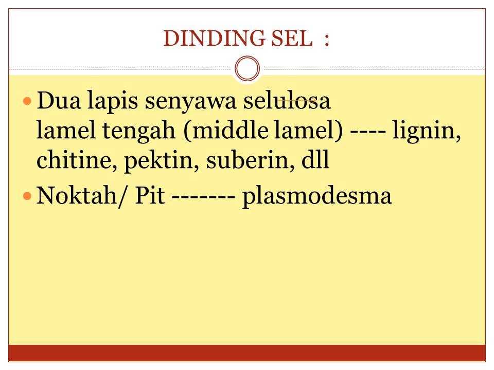 DINDING SEL : Dua lapis senyawa selulosa lamel tengah (middle lamel) ---- lignin, chitine, pektin, suberin, dll Noktah/ Pit ------- plasmodesma