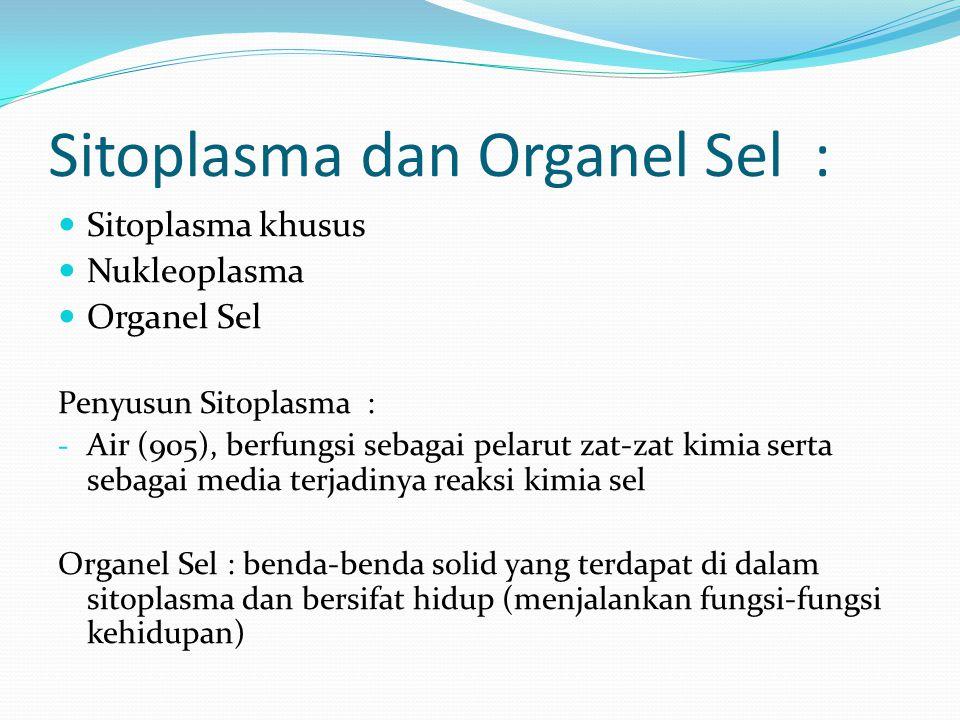Sitoplasma dan Organel Sel : Sitoplasma khusus Nukleoplasma Organel Sel Penyusun Sitoplasma : - Air (905), berfungsi sebagai pelarut zat-zat kimia ser