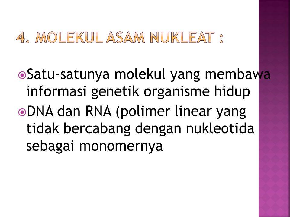  Satu-satunya molekul yang membawa informasi genetik organisme hidup  DNA dan RNA (polimer linear yang tidak bercabang dengan nukleotida sebagai mon