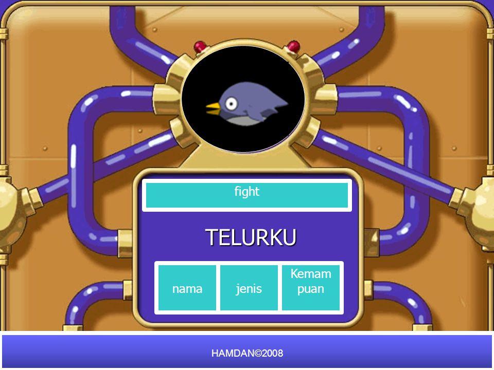 TELURKU fight nama Kemam puan HAMDAN©2008