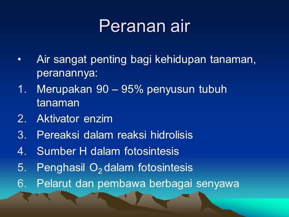 Peranan air Air sangat penting bagi kehidupan tanaman, peranannya: 1.Merupakan 90 – 95% penyusun tubuh tanaman 2.Aktivator enzim 3.Pereaksi dalam reak