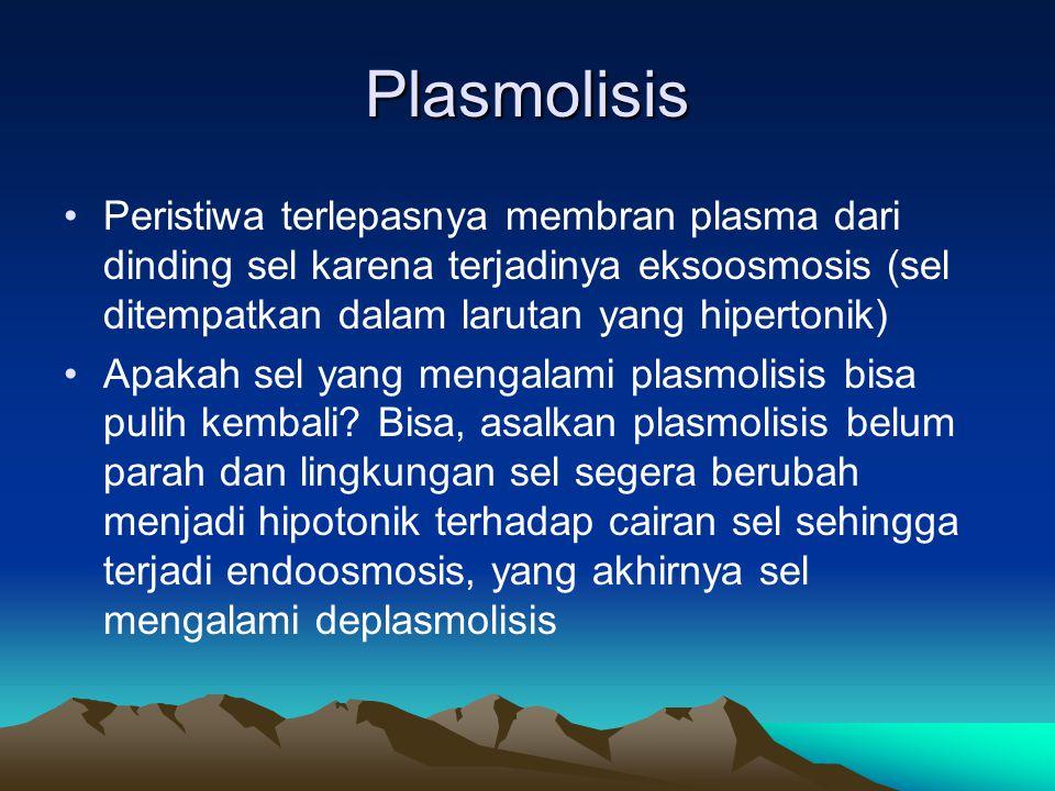 Plasmolisis Peristiwa terlepasnya membran plasma dari dinding sel karena terjadinya eksoosmosis (sel ditempatkan dalam larutan yang hipertonik) Apakah