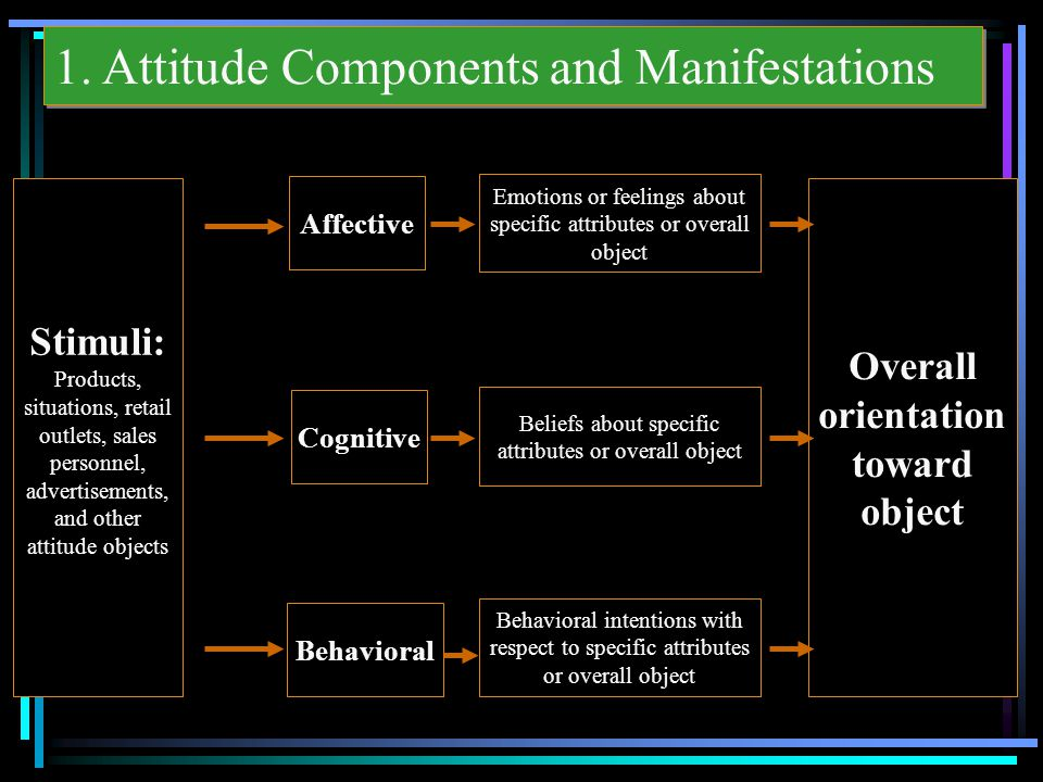 1. Attitude Components and Manifestations Stimuli: Products, situations, retail outlets, sales personnel, advertisements, and other attitude objects O