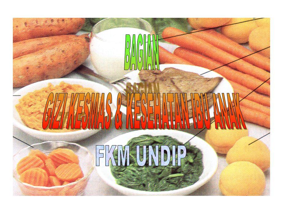 JUDUL-JUDUL PENELITIAN STAF GIZI Suplementasi Zat Besi, Vitamin A, dan Vitamin C untuk Mempercepat Penyembuhan Infeksi Saluran Pernafasan Akut Bagian Bawah Pemberdayaan Rumah Tangga dalam Menanggulangi Gangguan Akibat Kekurangan Iodium Pengaruh Suplementasi Zn dan Vitamin A Terhadap Respon Imun dan Morbiditas Anak Usia 2-5 Tahun Pengaruh suplementasi seng terhadap IgM anti PGL-1 penderita kusta stadium subkilinis di kota Semarang