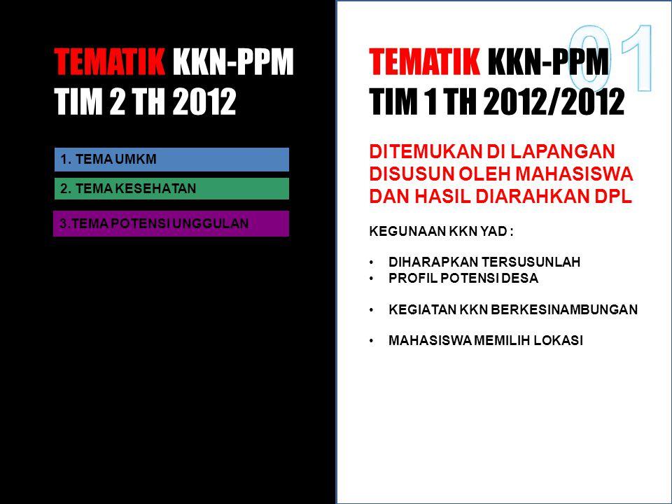 TEMATIK KKN-PPM TIM 2 TH 2012 1.TEMA UMKM 2.
