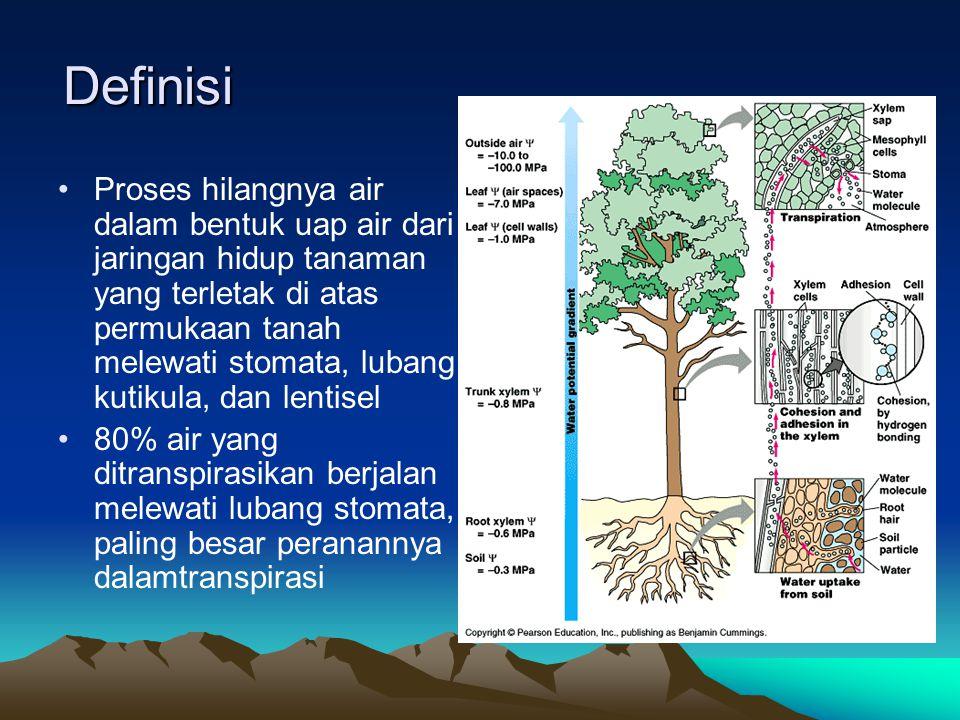 Perbedaan Transpirasi dengan evaporasi TranspirasiEvaporasi 1.