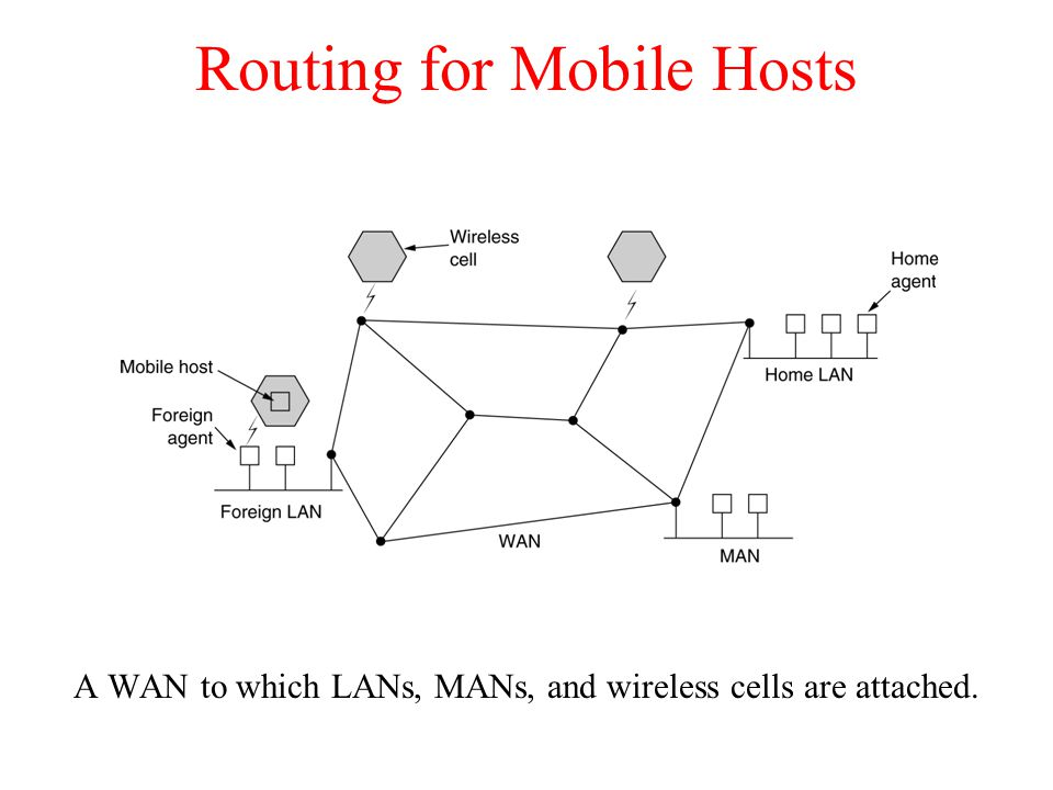 Routing for Mobile Hosts A WAN to which LANs, MANs, and wireless cells are attached.