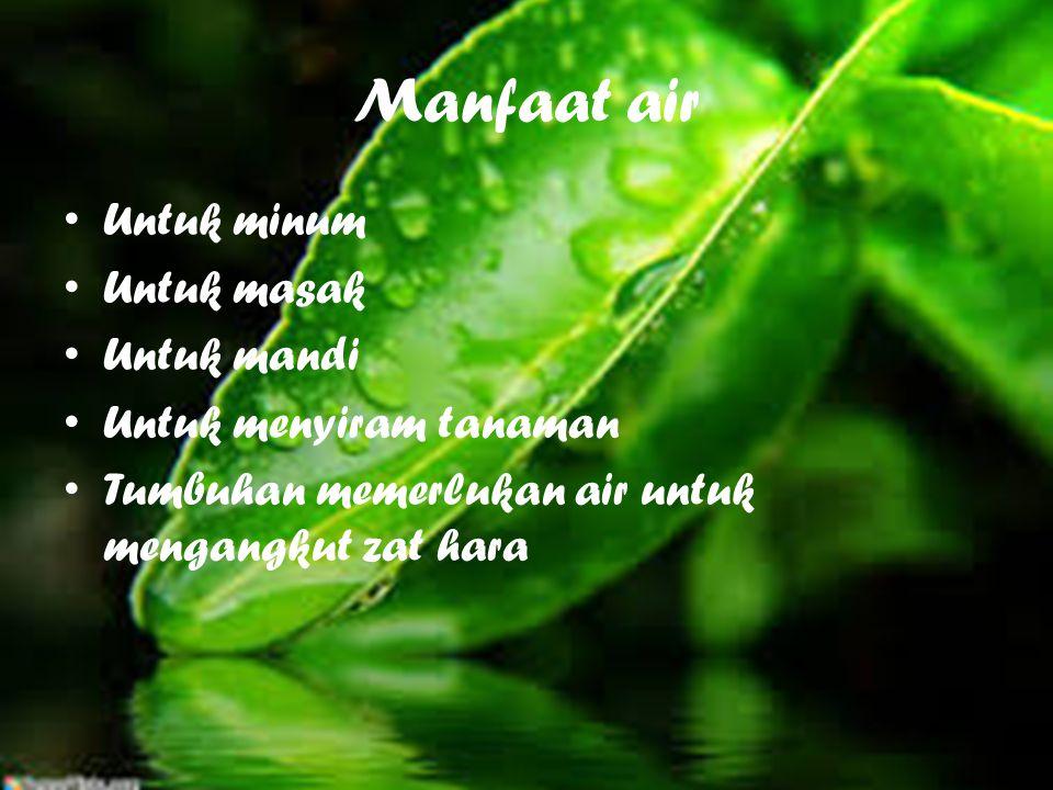 Manfaat air U ntuk minum U ntuk masak U ntuk mandi U ntuk menyiram tanaman T umbuhan memerlukan air untuk mengangkut zat hara