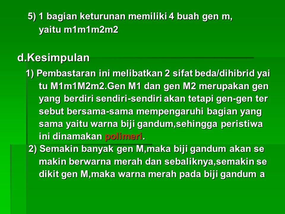 5) 1 bagian keturunan memiliki 4 buah gen m, 5) 1 bagian keturunan memiliki 4 buah gen m, yaitu m1m1m2m2 yaitu m1m1m2m2 d.Kesimpulan d.Kesimpulan 1) P
