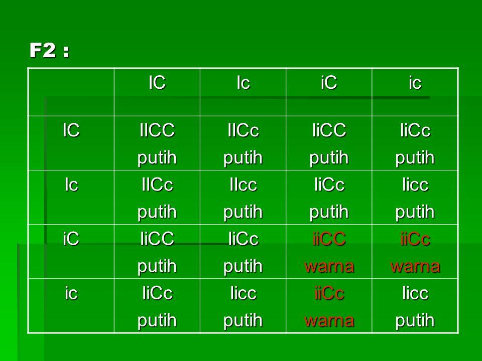 Perbandingan =(13) : (3) (IICC,IICc,IiCC,IiCc,IICc,IIcc,IiCc,Iicc,IiCC,IiCc,IiCc,Iicc, (IICC,IICc,IiCC,IiCc,IICc,IIcc,IiCc,Iicc,IiCC,IiCc,IiCc,Iicc, iicc) : (iiCC,iiCc,iiCc) iicc) : (iiCC,iiCc,iiCc) =((9)+(3)+(1)) : (3) ((IICC,IICc,IICc,IIcc,IiCc,Iicc,IiCc,Iicc,IiCc)+(IiCC,IiCC, ((IICC,IICc,IICc,IIcc,IiCc,Iicc,IiCc,Iicc,IiCc)+(IiCC,IiCC, IiCc)+(iicc)) + (iiCC,iiCc,iiCc) IiCc)+(iicc)) + (iiCC,iiCc,iiCc) =(9) : (3) : (3) : (1) (IICC,IICc,IICc,IIcc,IiCc,Iicc,IiCc,Iicc,IiCc) : (IiCC,IiCC, (IICC,IICc,IICc,IIcc,IiCc,Iicc,IiCc,Iicc,IiCc) : (IiCC,IiCC, IiCc) : (iiCC,iiCc,iiCc) : (iicc) IiCc) : (iiCC,iiCc,iiCc) : (iicc)