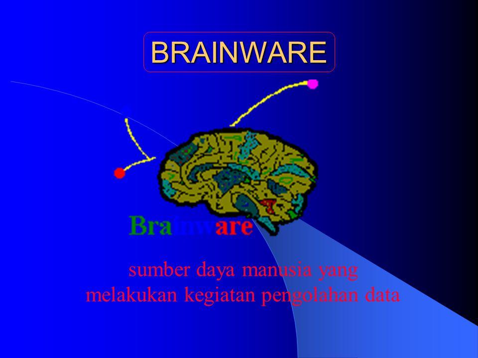 sumber daya manusia yang melakukan kegiatan pengolahan data BRAINWARE