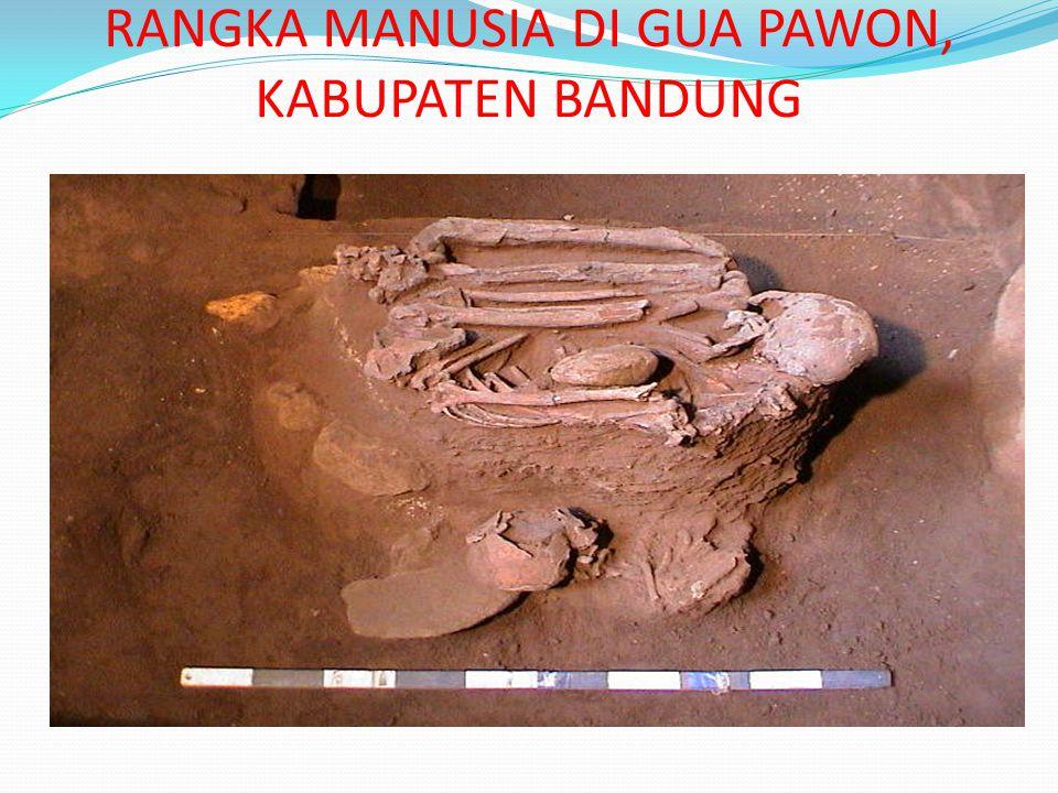 Alat serut hasil penelitian di Gua Pawon