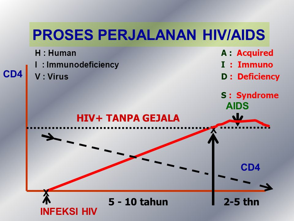 HIV+ TANPA GEJALA INFEKSI HIV 5 - 10 tahun AIDS 2-5 thn H : Human I : Immunodeficiency V : Virus A : Acquired I : Immuno D : Deficiency S : Syndrome X X CD4 PROSES PERJALANAN HIV/AIDS CD4