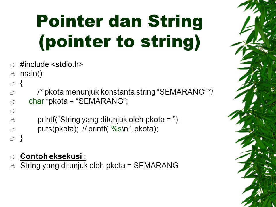 "Pointer dan String (pointer to string)  #include  main()  {  /* pkota menunjuk konstanta string ""SEMARANG"" */  char *pkota = ""SEMARANG"";   prin"