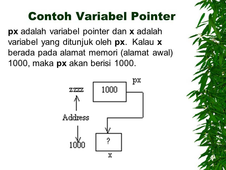 Contoh Variabel Pointer px adalah variabel pointer dan x adalah variabel yang ditunjuk oleh px.