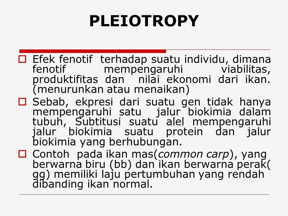 PLEIOTROPY  Efek fenotif terhadap suatu individu, dimana fenotif mempengaruhi viabilitas, produktifitas dan nilai ekonomi dari ikan. (menurunkan atau