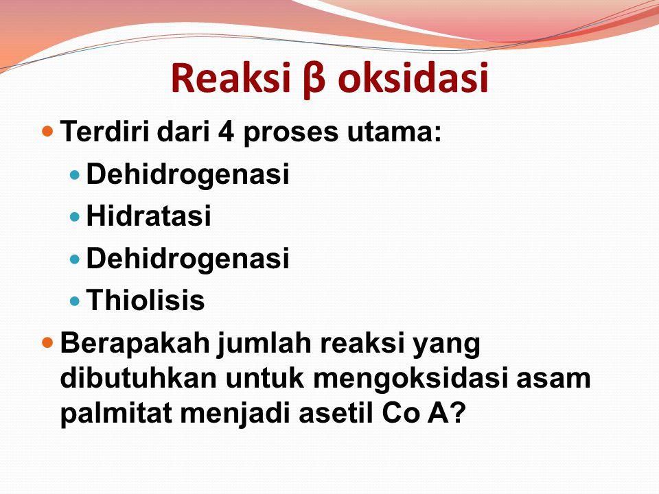 Reaksi β oksidasi Terdiri dari 4 proses utama: Dehidrogenasi Hidratasi Dehidrogenasi Thiolisis Berapakah jumlah reaksi yang dibutuhkan untuk mengoksid