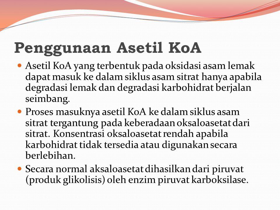 Penggunaan Asetil KoA Asetil KoA yang terbentuk pada oksidasi asam lemak dapat masuk ke dalam siklus asam sitrat hanya apabila degradasi lemak dan deg