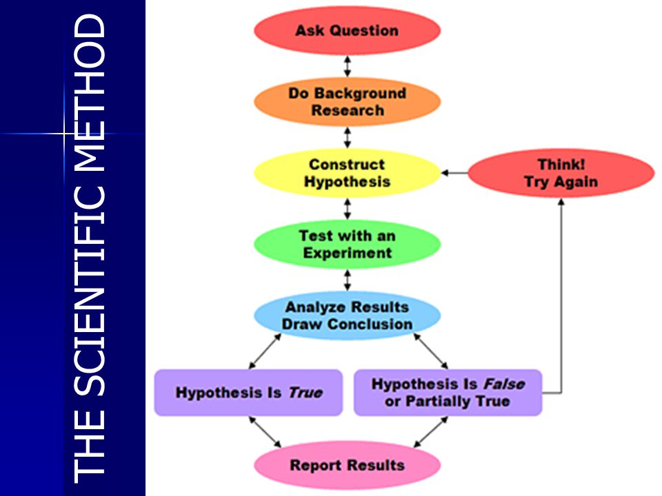14 THE SCIENTIFIC METHOD