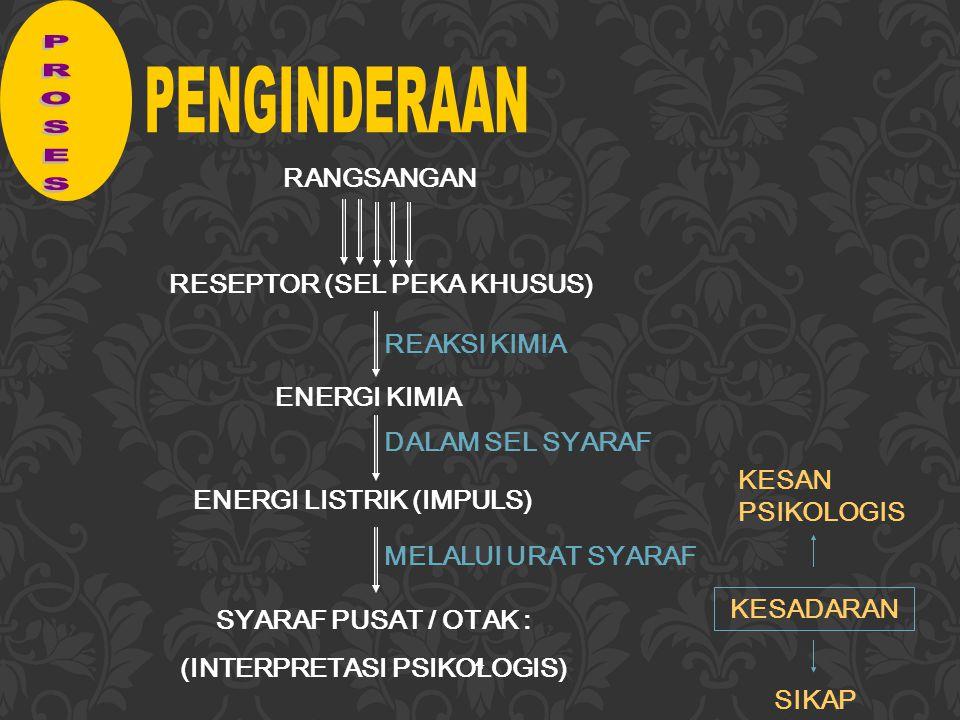4 RANGSANGAN RESEPTOR (SEL PEKA KHUSUS) ENERGI KIMIA ENERGI LISTRIK (IMPULS) SYARAF PUSAT / OTAK : (INTERPRETASI PSIKOLOGIS) REAKSI KIMIA DALAM SEL SYARAF MELALUI URAT SYARAF KESADARAN KESAN PSIKOLOGIS SIKAP