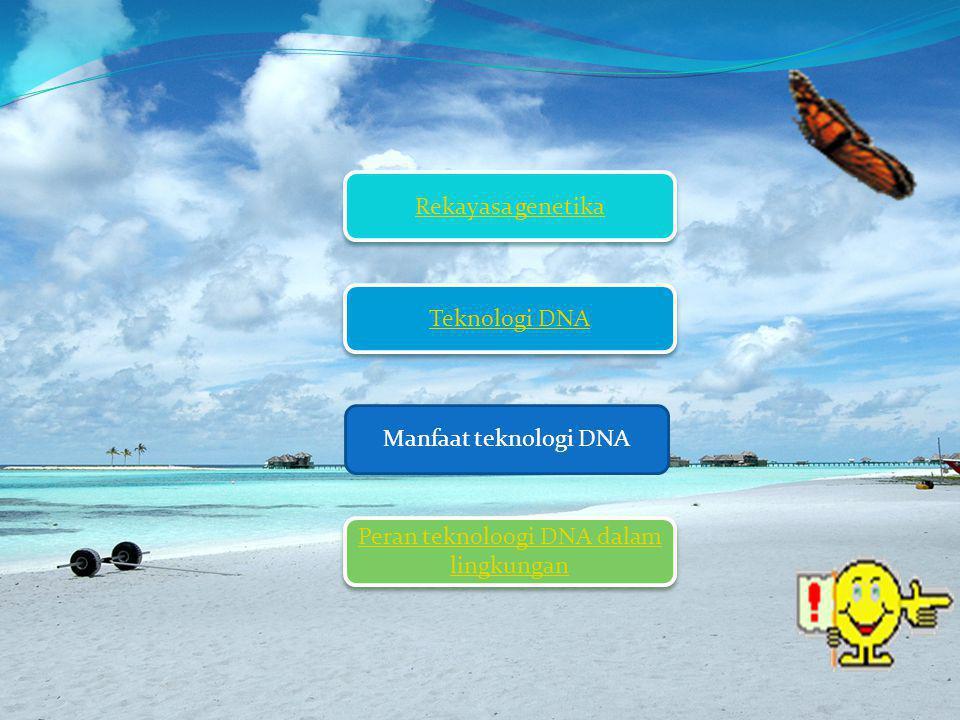 Rekayasa Genetika Rekayasa genetik adalah teknik yang dilakukan manusia dengan cara mentransfer/memindahka n gen (DNA) yang dianggap menguntungkan dari satu organisme ke susunan gen (DNA) dari organisme lain.