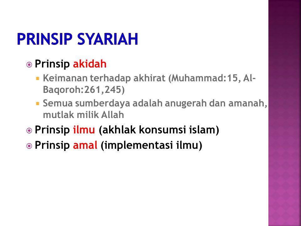  Prinsip akidah  Keimanan terhadap akhirat (Muhammad:15, Al- Baqoroh:261,245)  Semua sumberdaya adalah anugerah dan amanah, mutlak milik Allah  Prinsip ilmu (akhlak konsumsi islam)  Prinsip amal (implementasi ilmu)