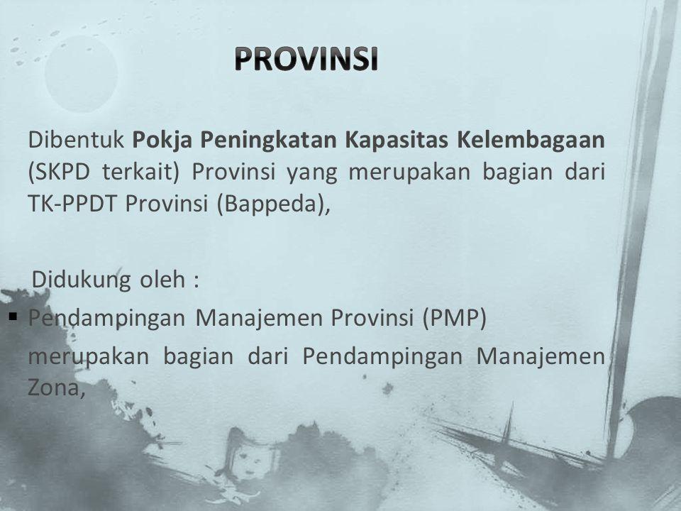 Dibentuk Pokja Peningkatan Kapasitas Kelembagaan (SKPD terkait) Provinsi yang merupakan bagian dari TK-PPDT Provinsi (Bappeda), Didukung oleh :  Pend