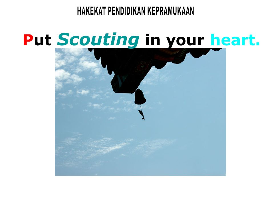 Put Scouting in your heart.
