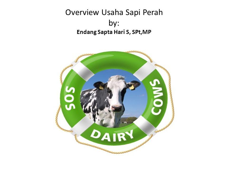 Overview Usaha Sapi Perah by: Endang Sapta Hari S, SPt,MP