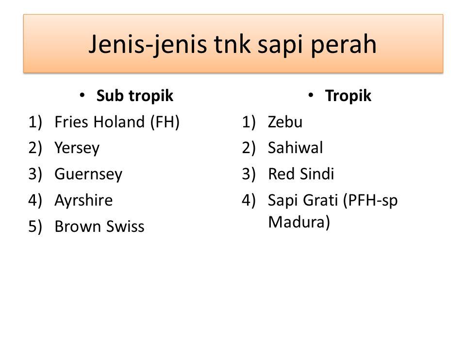 Jenis-jenis tnk sapi perah Sub tropik 1)Fries Holand (FH) 2)Yersey 3)Guernsey 4)Ayrshire 5)Brown Swiss Tropik 1)Zebu 2)Sahiwal 3)Red Sindi 4)Sapi Grat