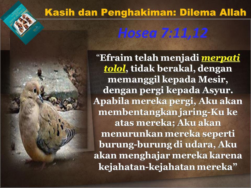 Efraim telah menjadi merpati tolol, tidak berakal, dengan memanggil kepada Mesir, dengan pergi kepada Asyur.