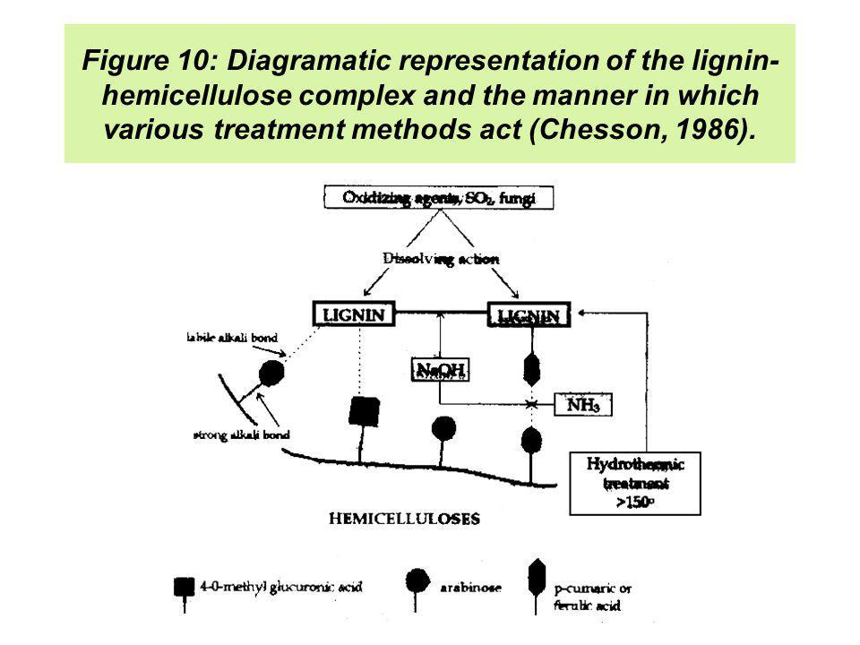 Figure 10: Diagramatic representation of the lignin- hemicellulose complex and the manner in which various treatment methods act (Chesson, 1986).