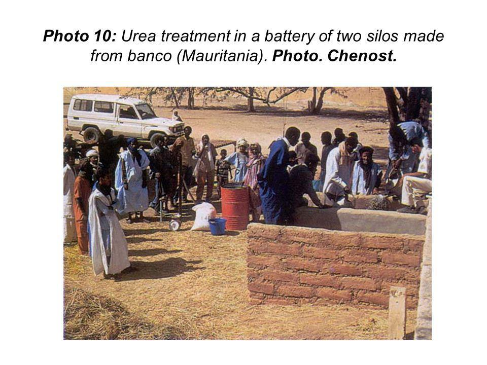 Photo 10: Urea treatment in a battery of two silos made from banco (Mauritania). Photo. Chenost.