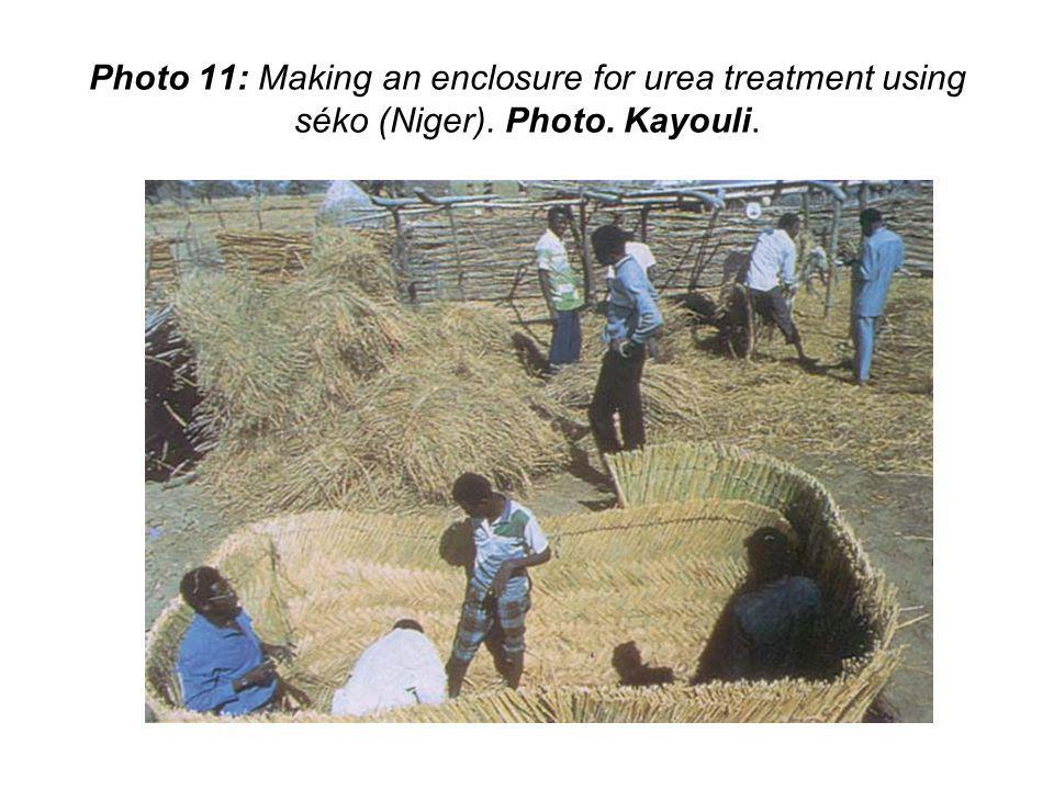 Photo 11: Making an enclosure for urea treatment using séko (Niger). Photo. Kayouli.