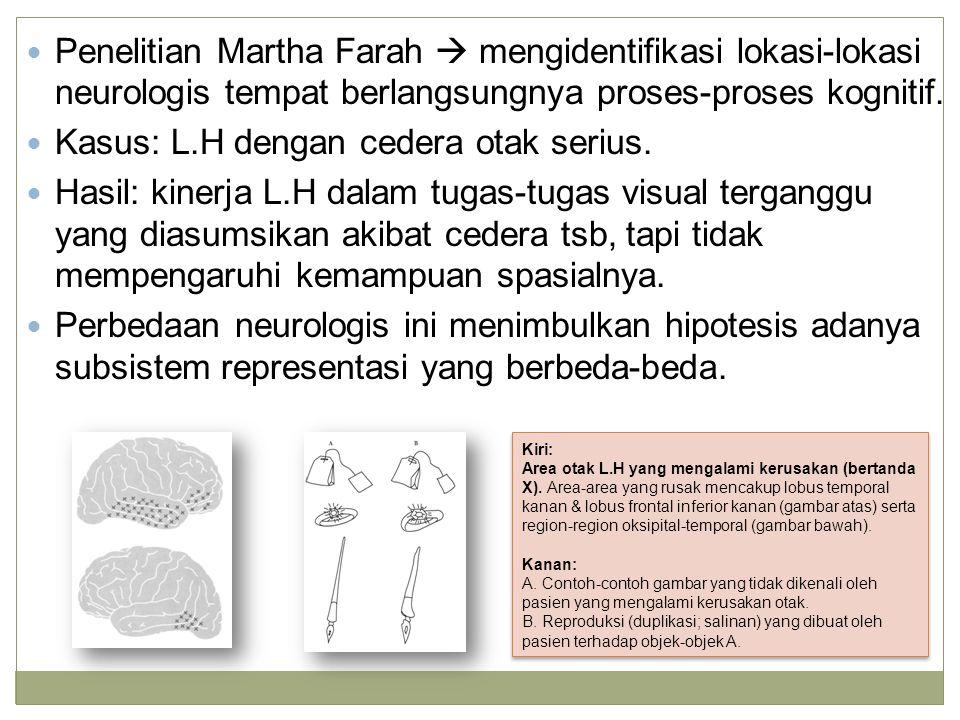 Penelitian Martha Farah  mengidentifikasi lokasi-lokasi neurologis tempat berlangsungnya proses-proses kognitif.