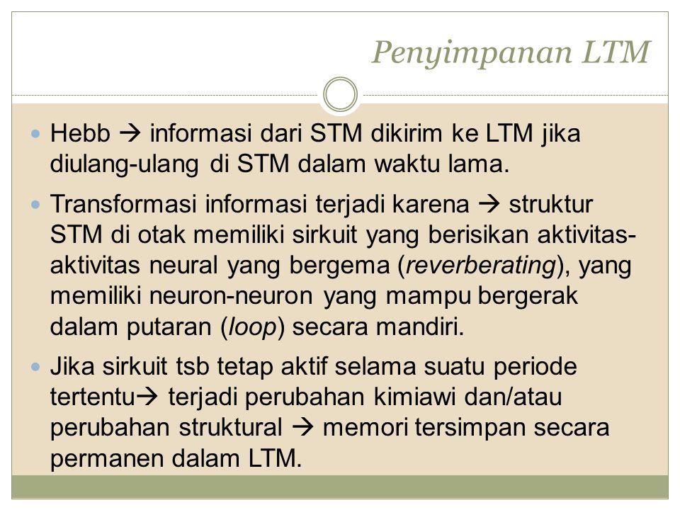 Penyimpanan LTM Hebb  informasi dari STM dikirim ke LTM jika diulang-ulang di STM dalam waktu lama.