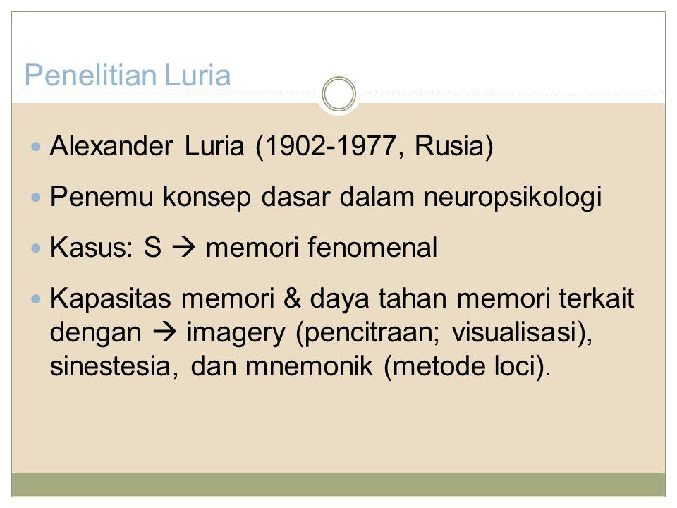 Penelitian Luria Alexander Luria (1902-1977, Rusia) Penemu konsep dasar dalam neuropsikologi Kasus: S  memori fenomenal Kapasitas memori & daya tahan memori terkait dengan  imagery (pencitraan; visualisasi), sinestesia, dan mnemonik (metode loci).