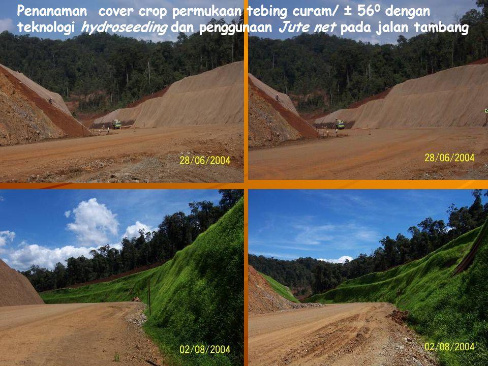 Penanaman cover crop permukaan tebing curam/ ± 56 0 dengan teknologi hydroseeding dan penggunaan Jute net pada jalan tambang