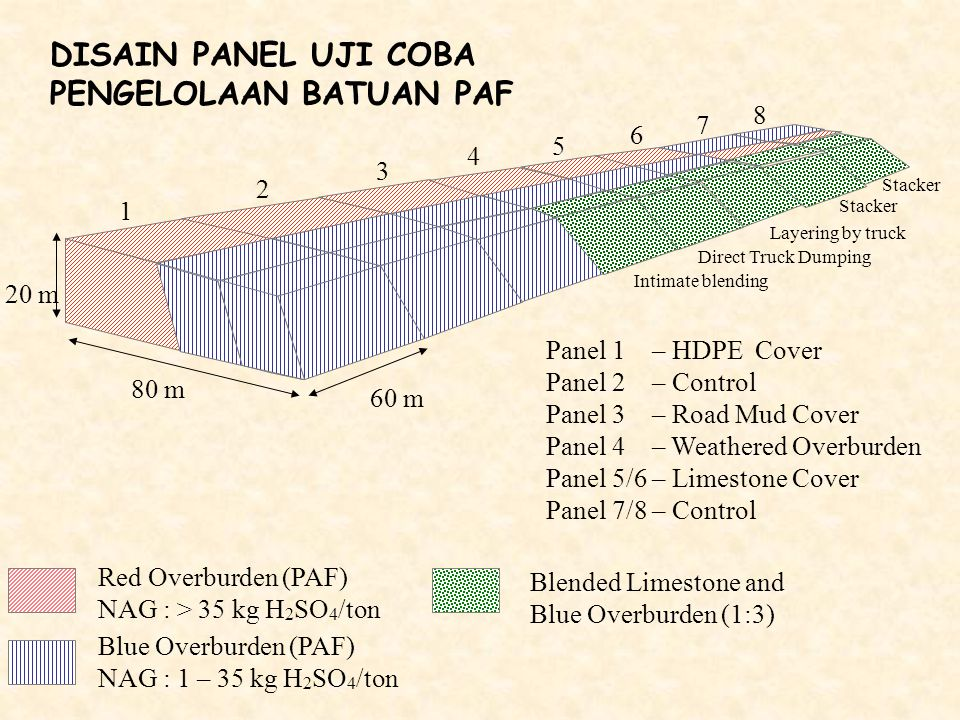 DISAIN PANEL UJI COBA PENGELOLAAN BATUAN PAF Red Overburden (PAF) NAG : > 35 kg H 2 SO 4 /ton Blue Overburden (PAF) NAG : 1 – 35 kg H 2 SO 4 /ton Blen