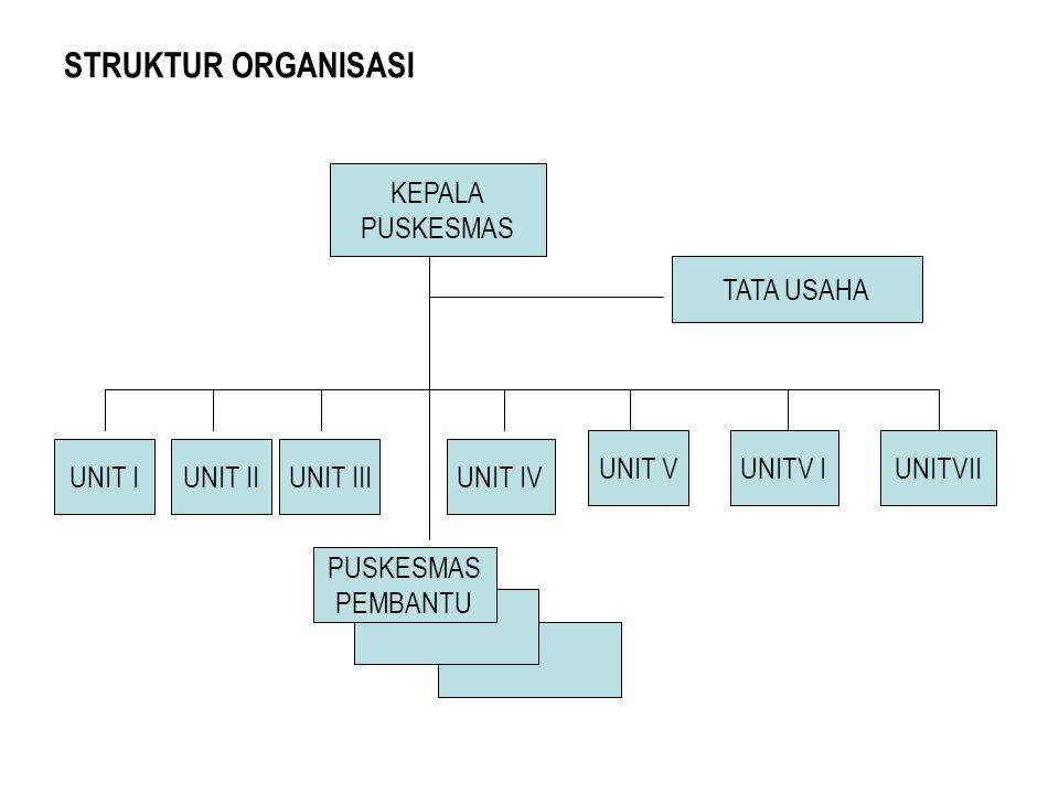 STRUKTUR ORGANISASI KEPALA PUSKESMAS UNIT V TATA USAHA UNITV IUNITVII UNIT IVUNIT IUNIT IIIUNIT II PUSKESMAS PEMBANTU
