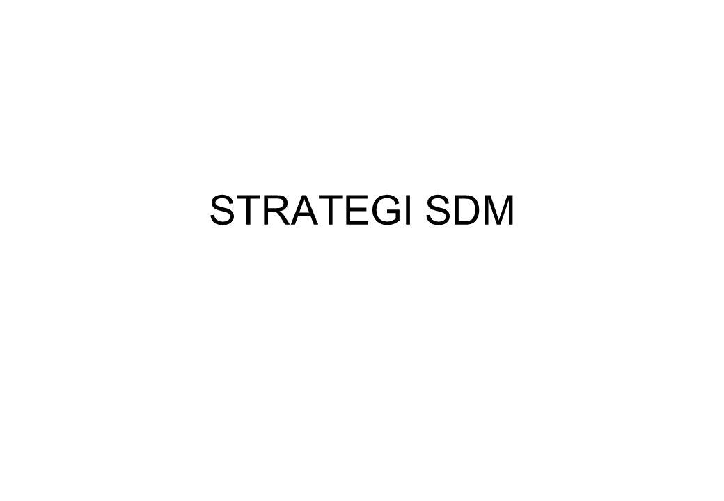 ISU-2 SDM YANG STRATEGIS 1.Bagaimana perusahaan mengidentifikasi, menganalisa dan menyeleksi isu2 SDM yang ditunjukkan melalui strategi SDM 2.Isu2 SDM yang tengah terjadi, yang diperoleh dari strategi bisnis dan dari perubahan lingkungan yang diharapkan.