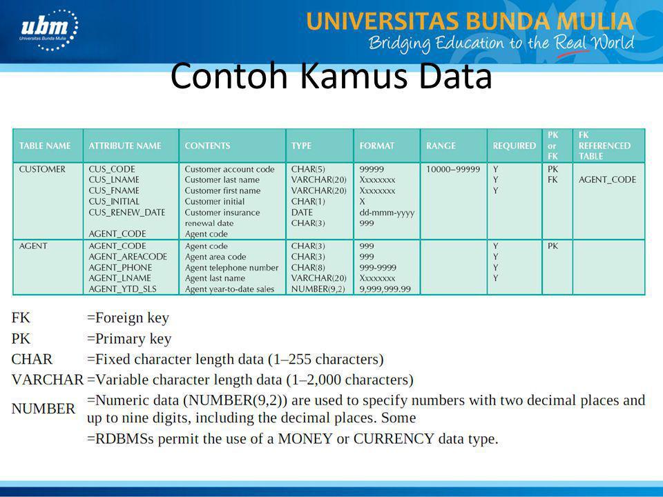 Contoh Kamus Data